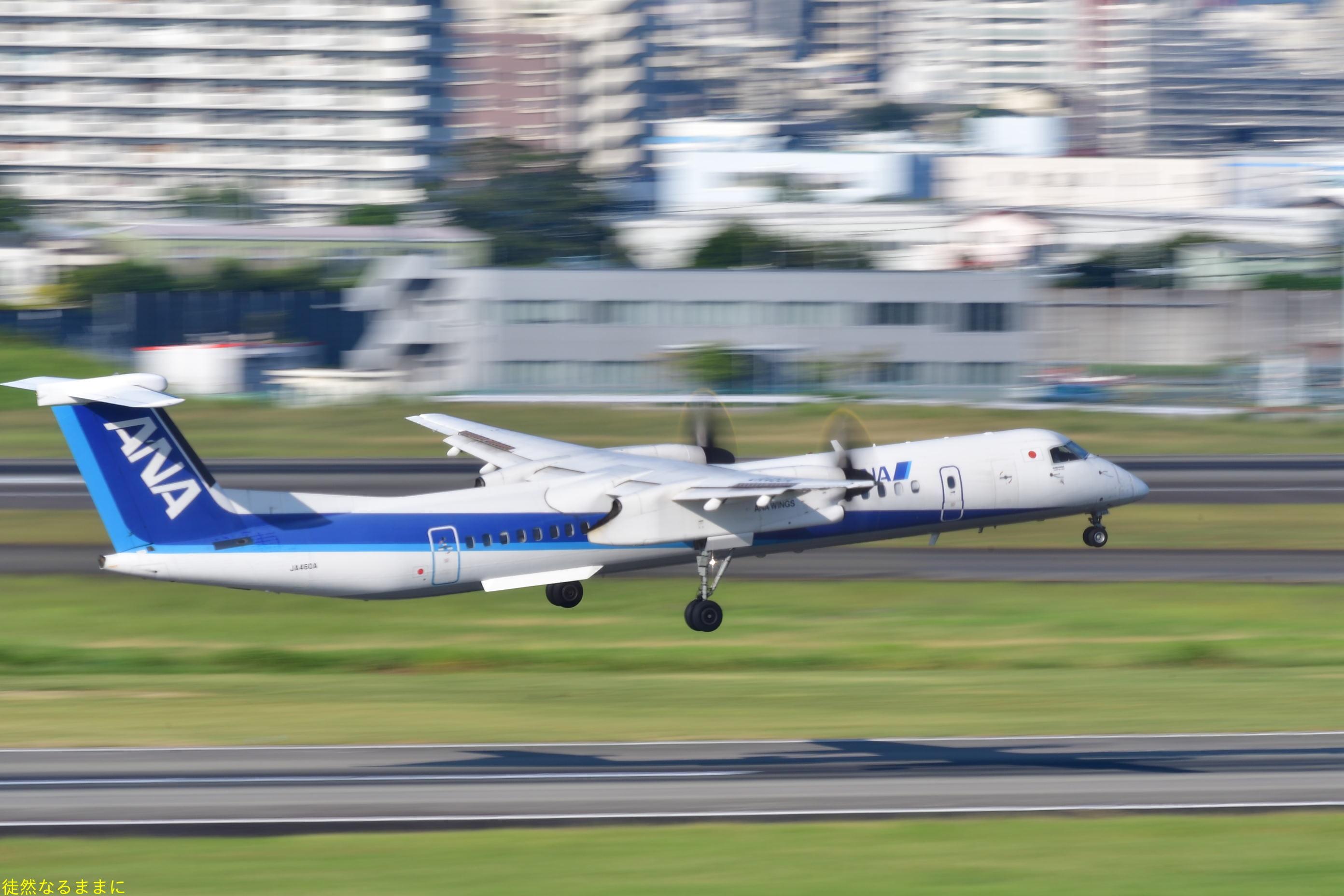 伊丹空港_d0285540_06411166.jpg
