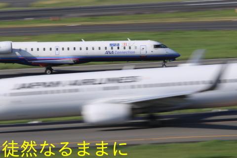 伊丹空港_d0285540_08051680.jpg
