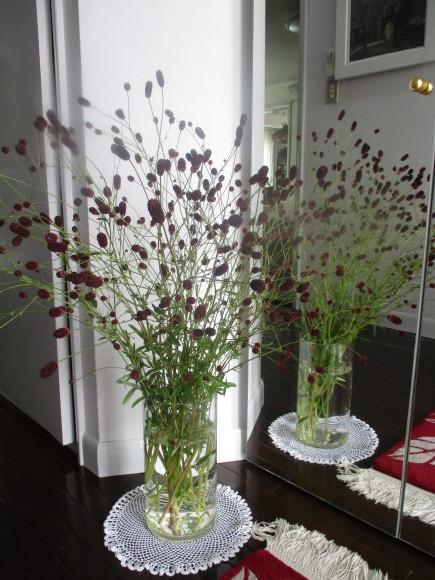 お花あれこれ_a0279743_11163502.jpg