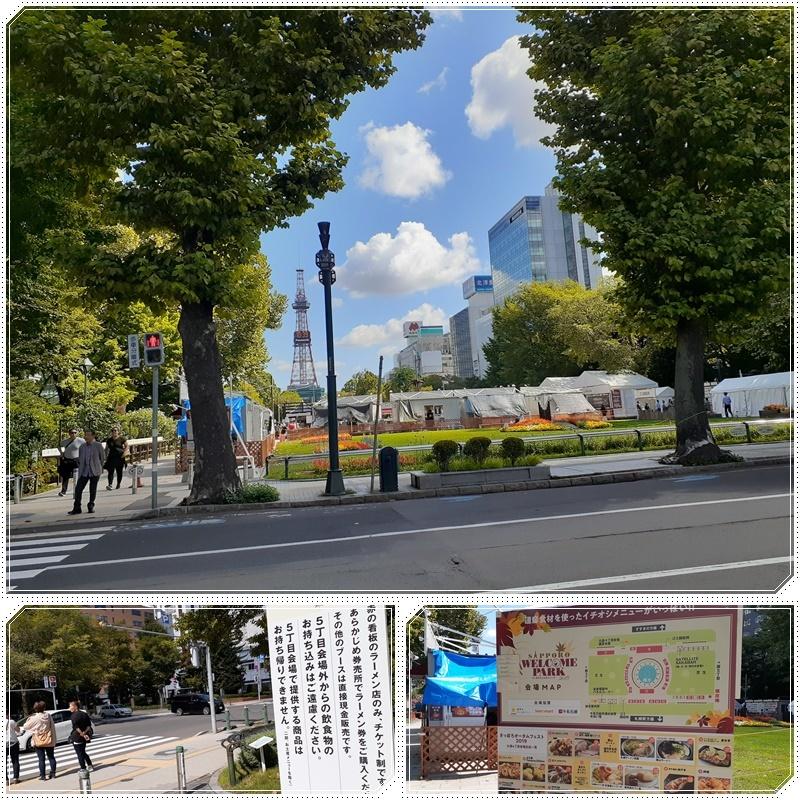 大通公園の百日紅_b0236665_07412135.jpg