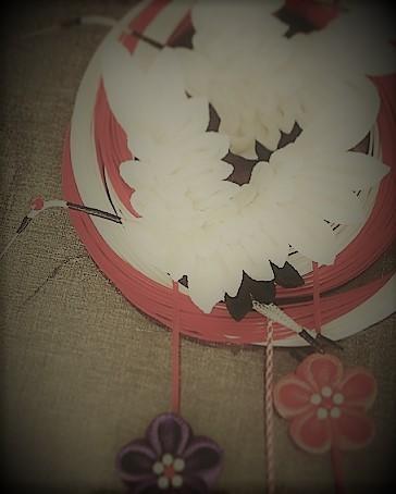 シクラメン、飛翔鶴~インスタグラムより_c0122475_00201122.jpg