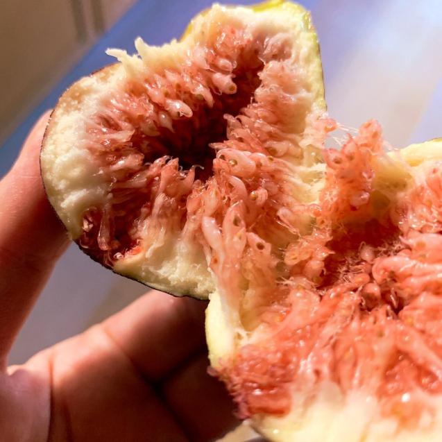 季節の野菜、フルーツは身体に必要なもの。_b0176010_22543300.jpg