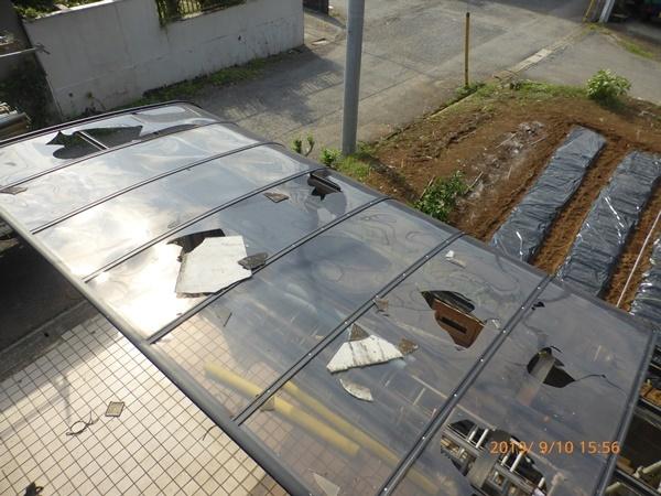 台風被害_b0142417_11220764.jpg