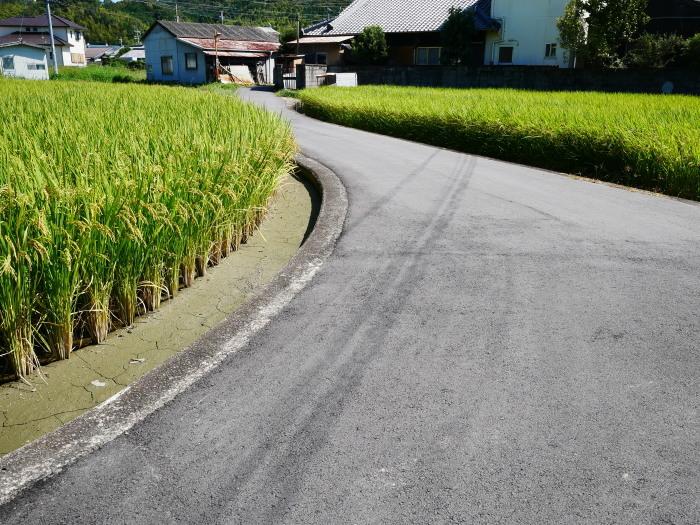田園風景  2019-09-23 00:00  _b0093754_21272617.jpg