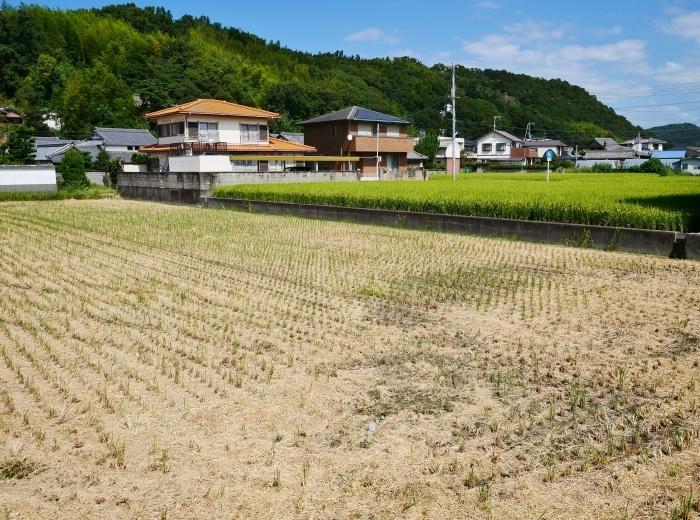 田園風景  2019-09-23 00:00  _b0093754_21283008.jpg