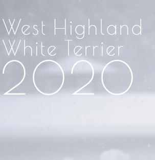 2020年版ウェスティ・カレンダー_b0107163_08213989.jpg