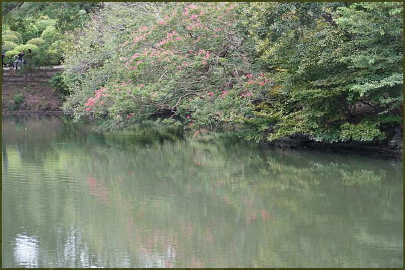 水面に映る風景_b0019313_14402196.jpg