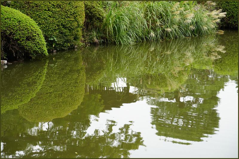 水面に映る風景_b0019313_14430876.jpg