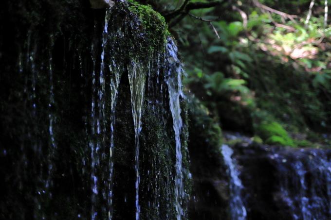 【白糸の滝】軽井沢 - 4 -_f0348831_23150617.jpg