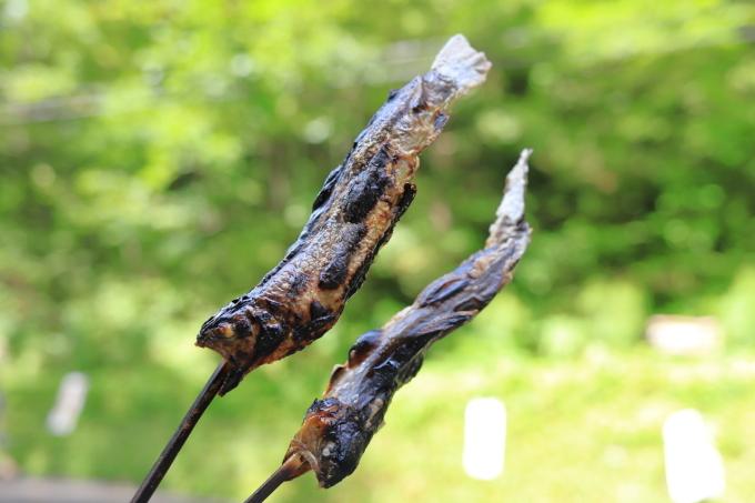 【白糸の滝】軽井沢 - 4 -_f0348831_23152160.jpg