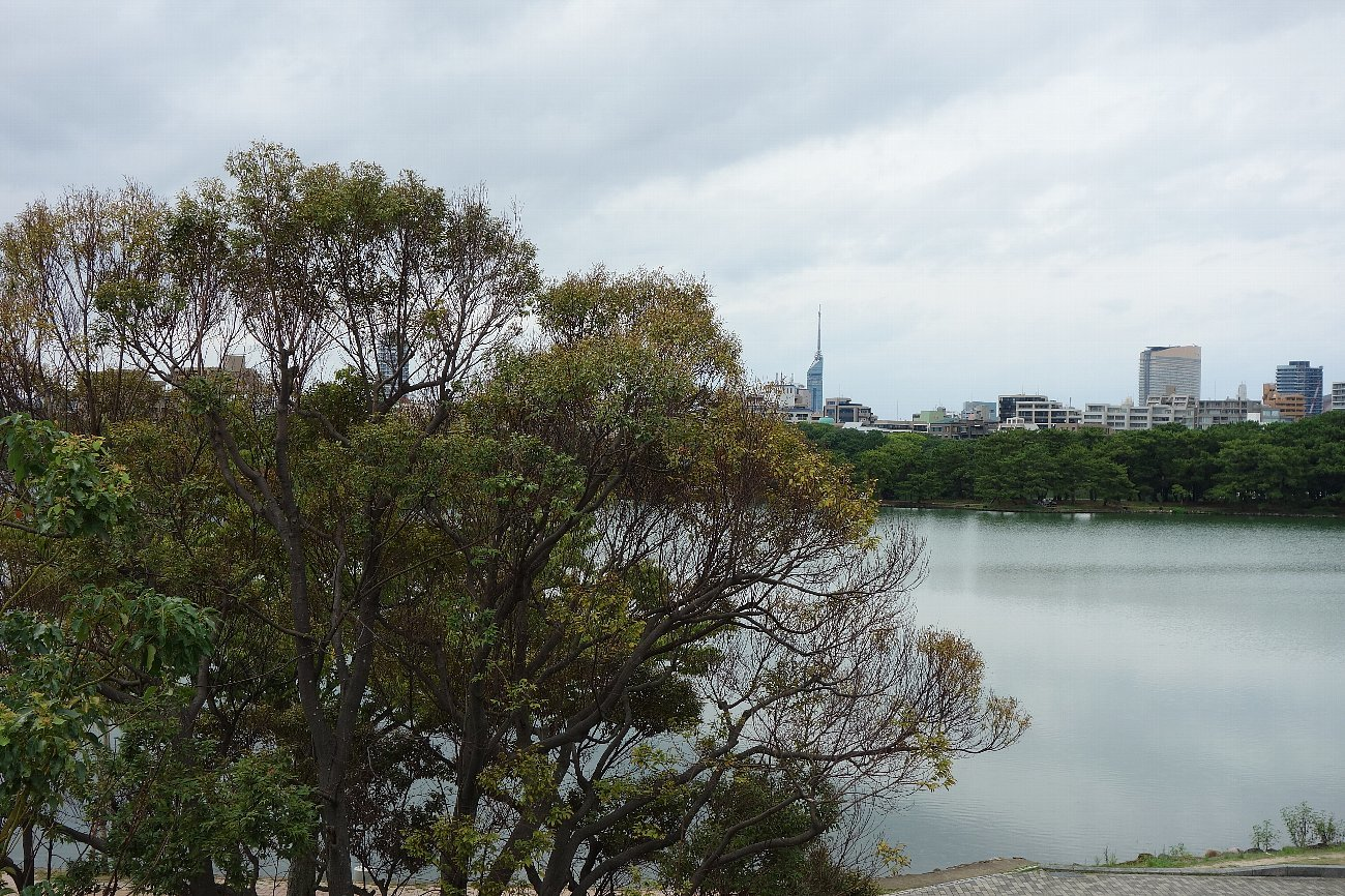 福岡市美術館_c0112559_07463451.jpg