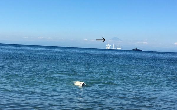 海ひとりじめ!_c0110361_16174377.jpg