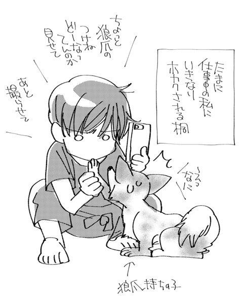 恋犬原稿作業中_a0342172_19275935.jpg