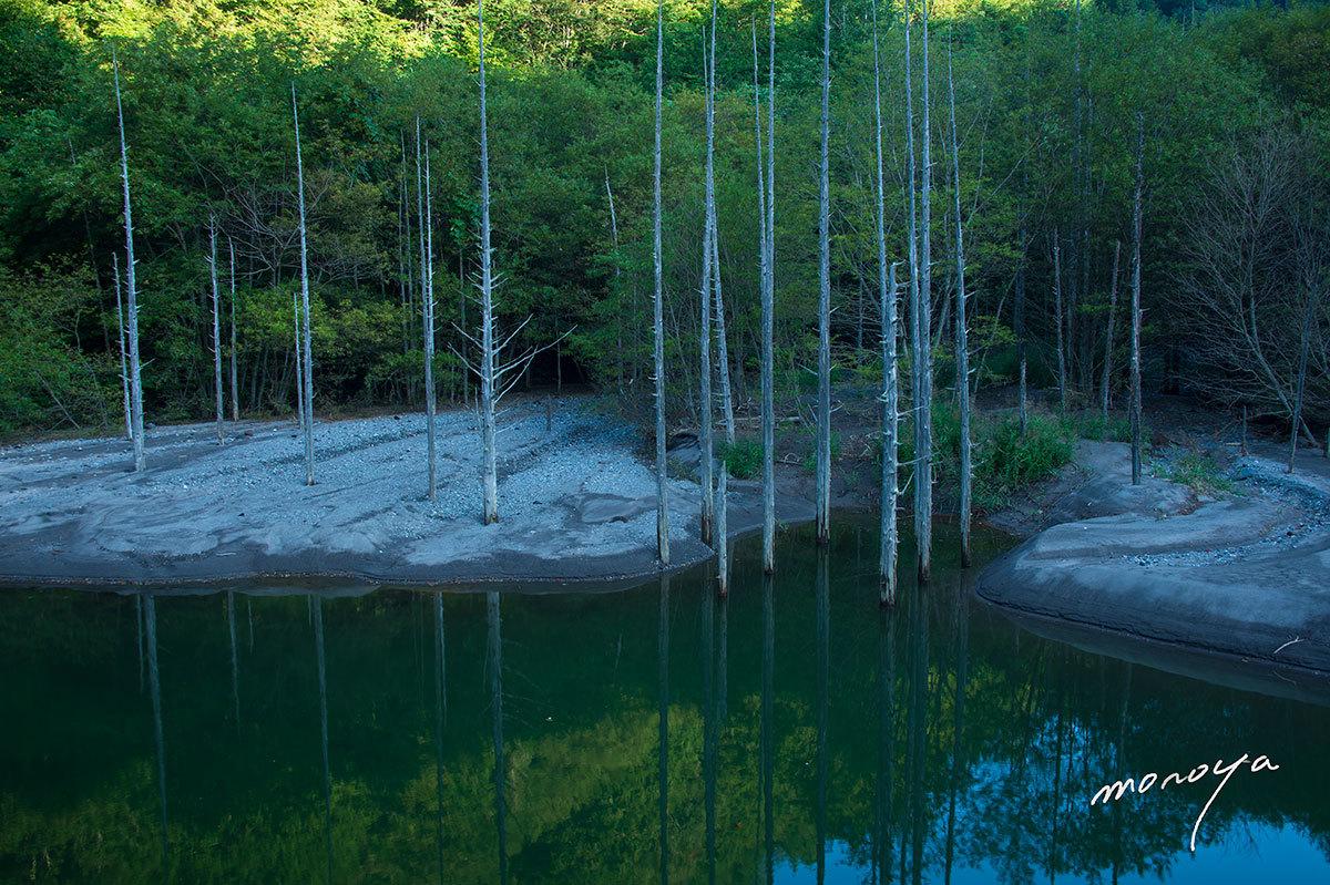 自然湖2_c0085877_11434903.jpg