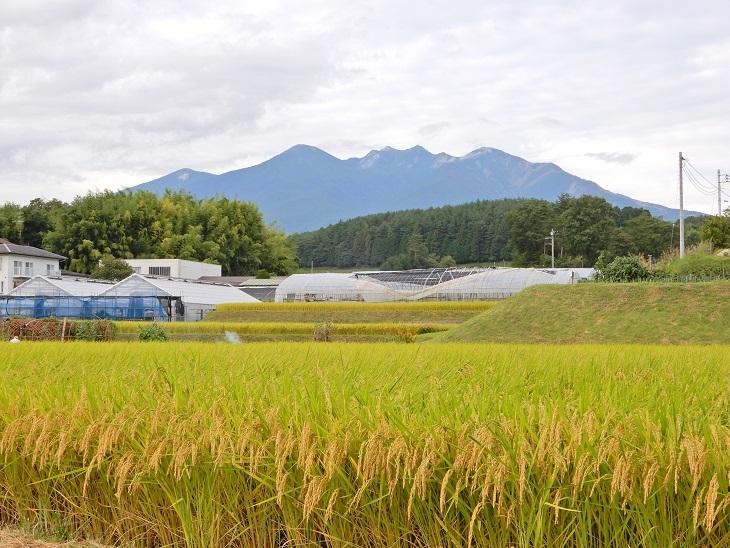『富士の国やまなし 移住相談会 in 東京』 出展予定^^_a0211886_13333605.jpg