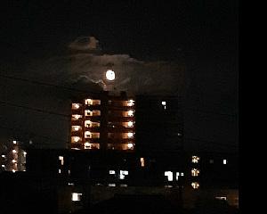 お月様_e0360486_13351714.jpg