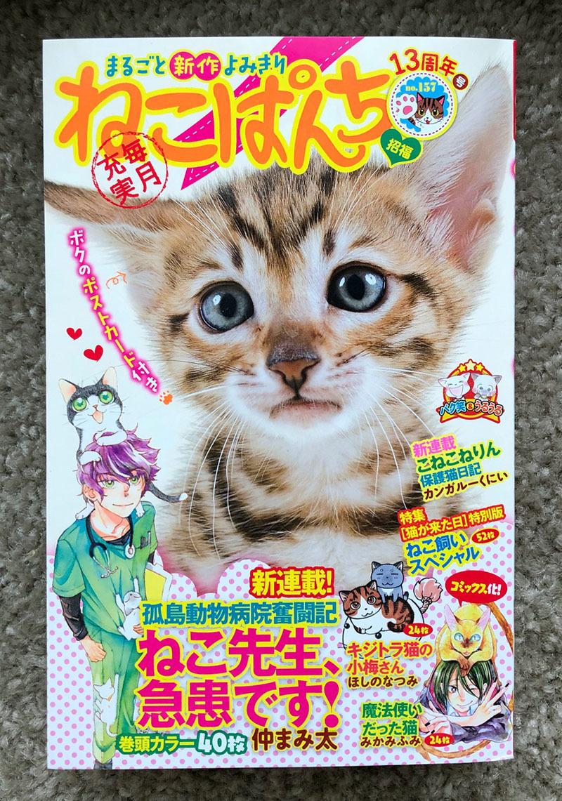 ねこぱんち「でも、猫がいるじゃないか」_d0118933_09560889.jpg