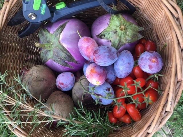 収穫祭り_a0171939_03490127.jpg