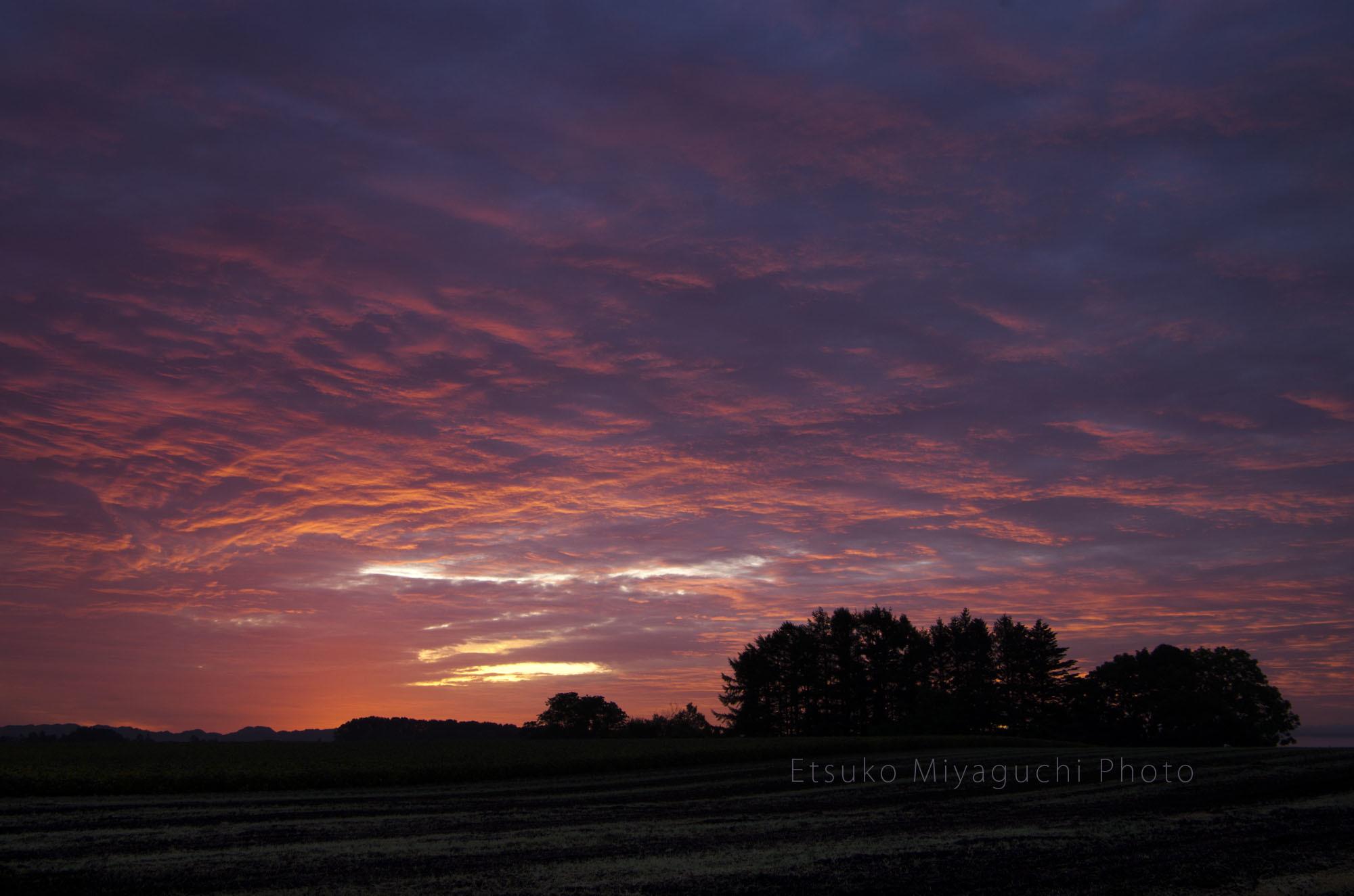 秋の朝焼け_f0152939_16044132.jpg