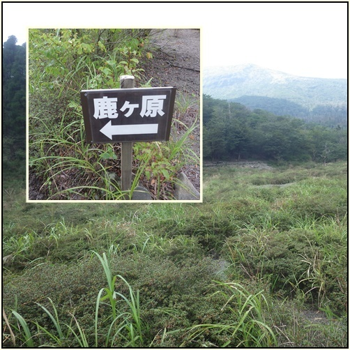 天孫降臨コースから高千穂峰周回コースを歩く_e0164643_16502327.jpg
