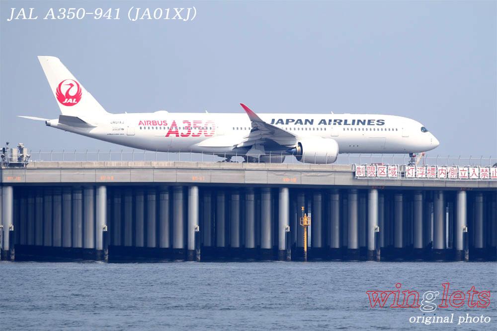'19年 川崎・浮嶋公園レポート ・・・ JAL/JA01XJ_f0352866_20585875.jpg