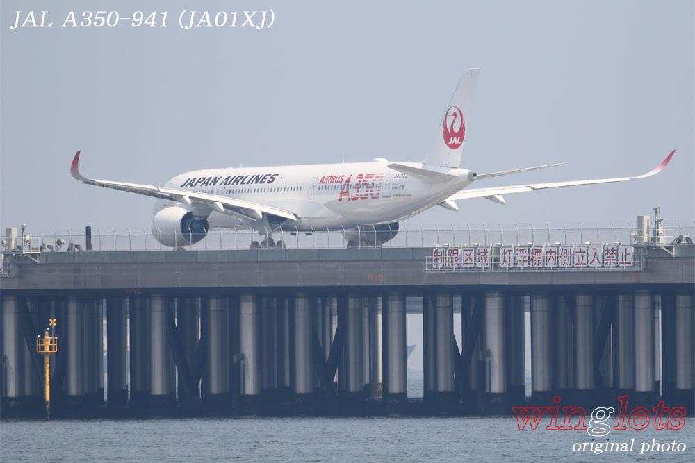 '19年 川崎・浮嶋公園レポート ・・・ JAL/JA01XJ_f0352866_20591042.jpg