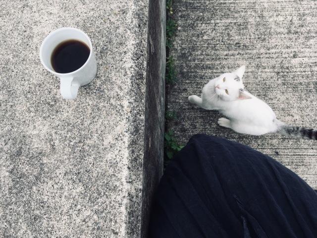 秋コーヒー_b0183681_11180657.jpeg