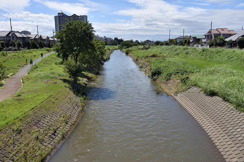 小畔川便り(台風・雷雨・伐採:2019/9/9-12)_f0031682_09430051.jpg