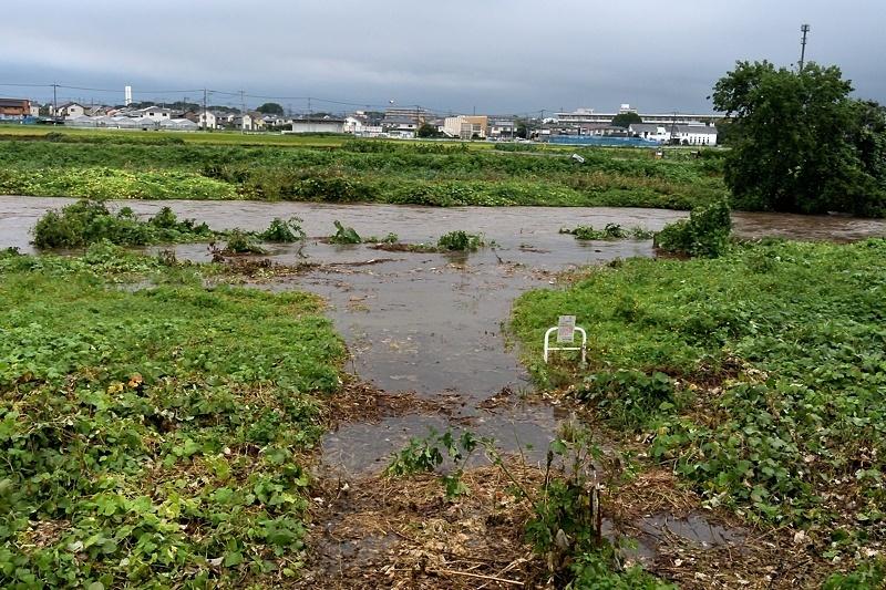 小畔川便り(台風・雷雨・伐採:2019/9/9-12)_f0031682_09430088.jpg