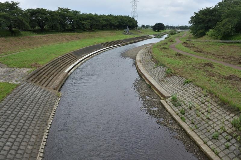小畔川便り(台風・雷雨・伐採:2019/9/9-12)_f0031682_09430613.jpg