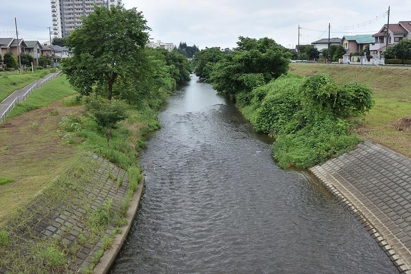 小畔川便り(台風・雷雨・伐採:2019/9/9-12)_f0031682_09430635.jpg