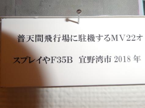2019年9月22日   鎮魂と不屈の沖縄展  金城家族一般 その11_d0249595_11565653.jpg