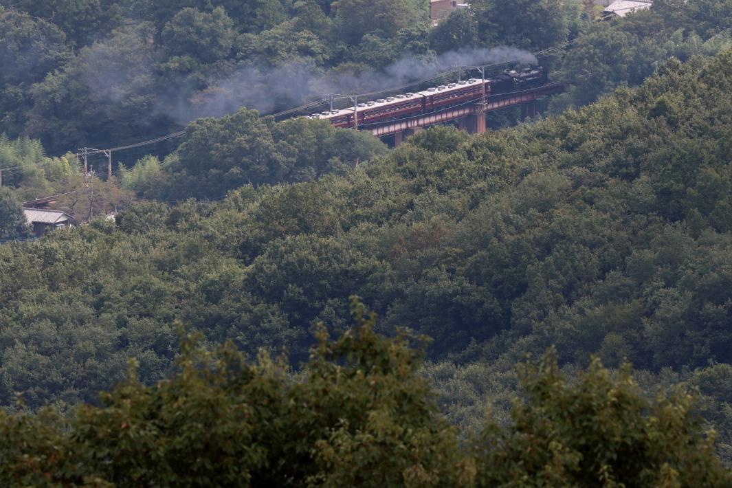 初秋の緑の森に汽車の煙が流れる - 2019年初秋・秩父鉄道 -_b0190710_16275069.jpg