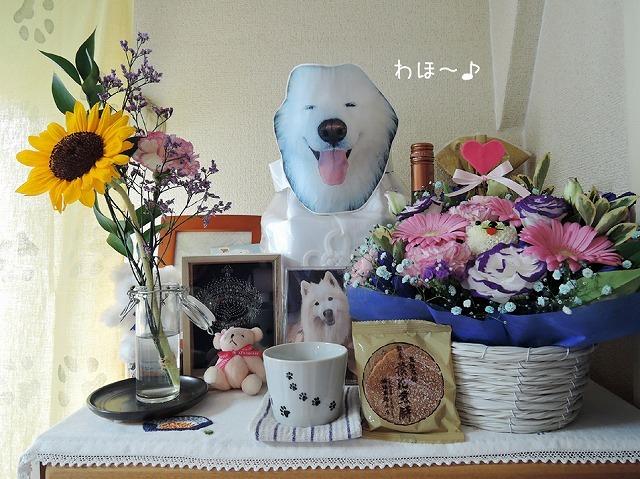 お花のクローカ_c0062832_13285921.jpg