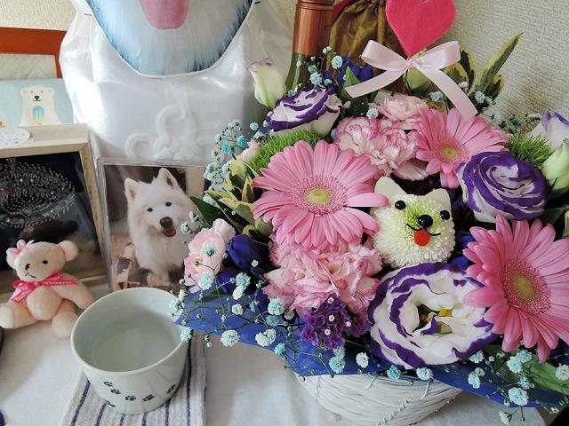 お花のクローカ_c0062832_13285952.jpg