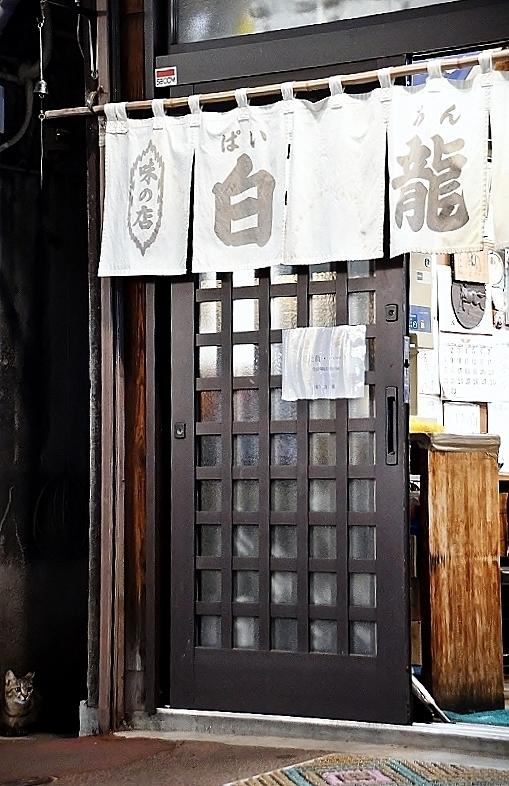 盛岡三昧の旅⑥ 野良猫とジャジャ麺_b0314043_10210480.jpg