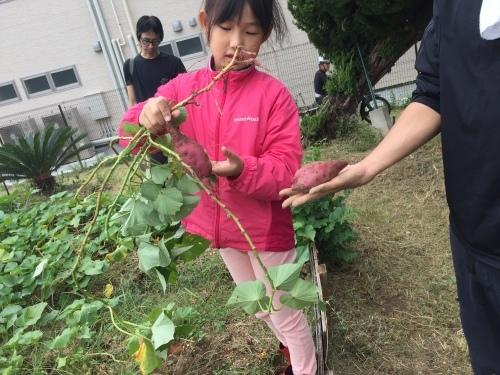 草木染めと大根の種まきをしました!!_f0079749_17431845.jpg