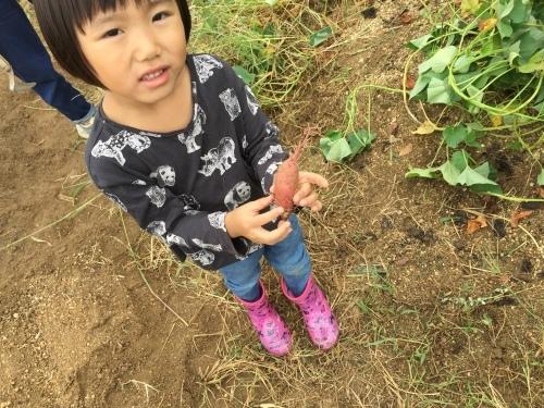 草木染めと大根の種まきをしました!!_f0079749_17441870.jpg