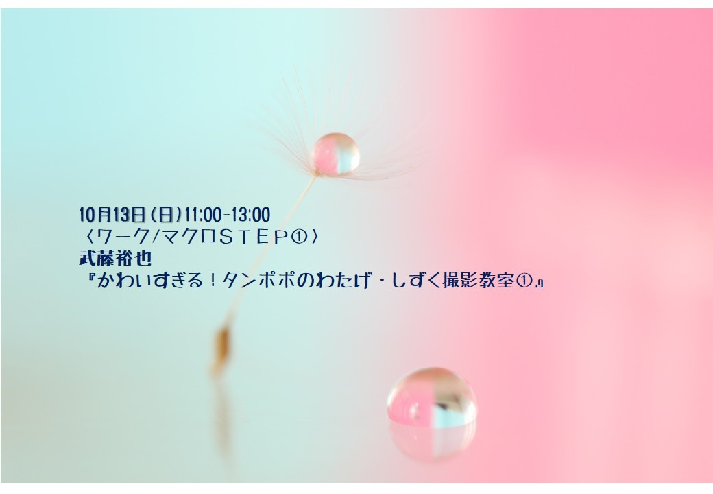 c0238457_17445902.jpg
