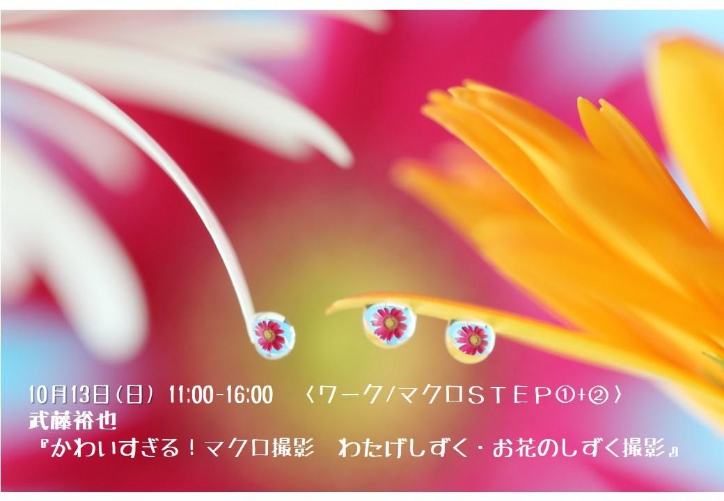 c0238457_17450802.jpg