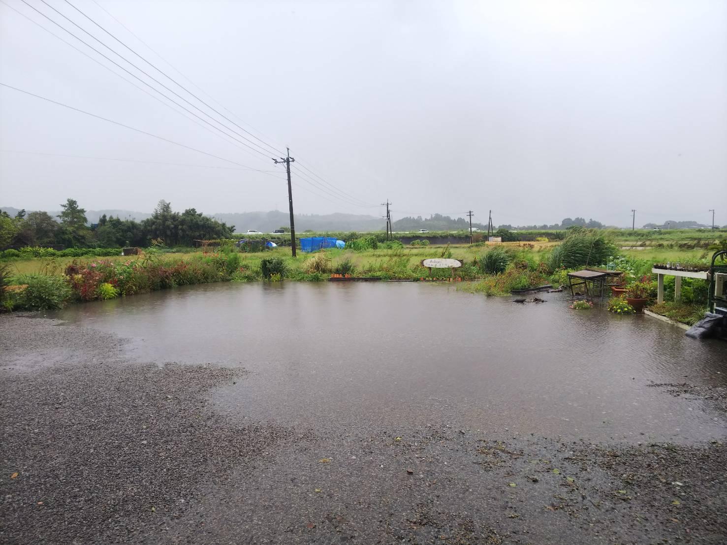 9月22日(日) 台風のため臨時休業です_b0137969_06170635.jpeg