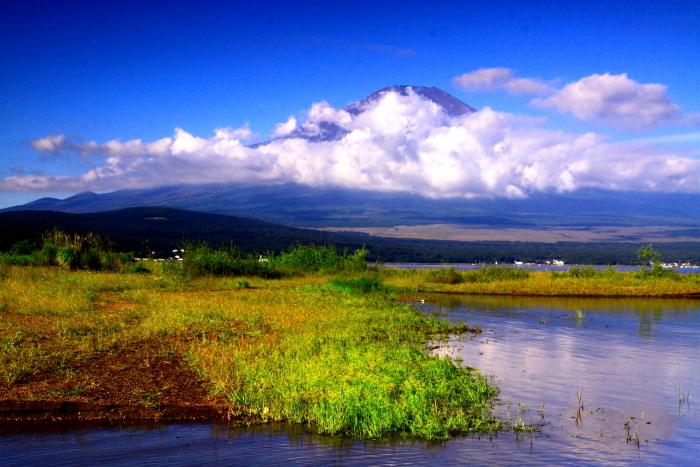 令和元年9月の富士(20)山中湖平野の浜の富士_e0344396_18335706.jpg