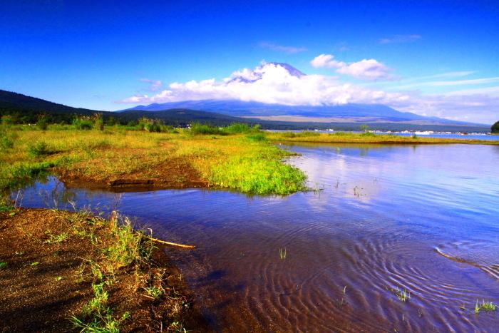 令和元年9月の富士(20)山中湖平野の浜の富士_e0344396_18342315.jpg
