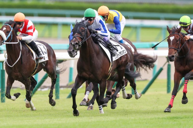 2019年9月22日 神戸新聞杯(GⅡ)&ジョッキーフェスティバル_f0204898_20374148.jpg