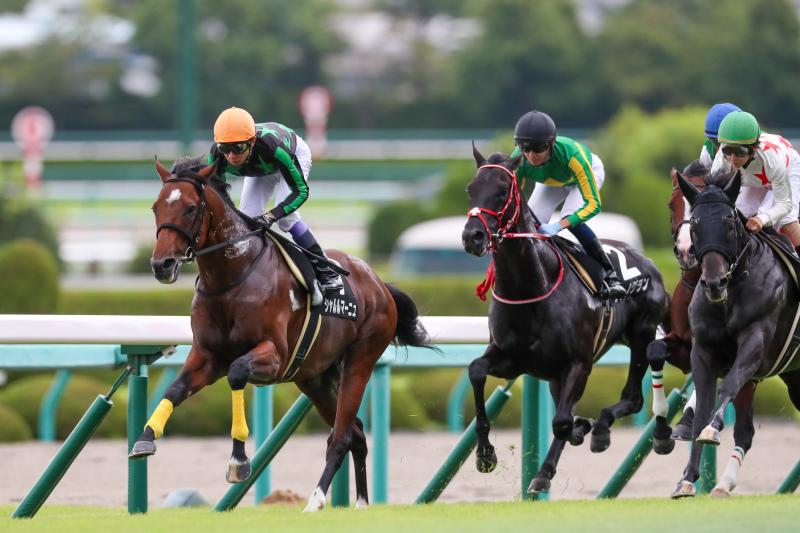 2019年9月22日 神戸新聞杯(GⅡ)&ジョッキーフェスティバル_f0204898_20423509.jpg