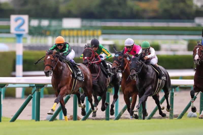 2019年9月22日 神戸新聞杯(GⅡ)&ジョッキーフェスティバル_f0204898_20432701.jpg