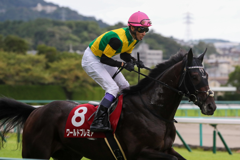 2019年9月22日 神戸新聞杯(GⅡ)&ジョッキーフェスティバル_f0204898_20591309.jpg