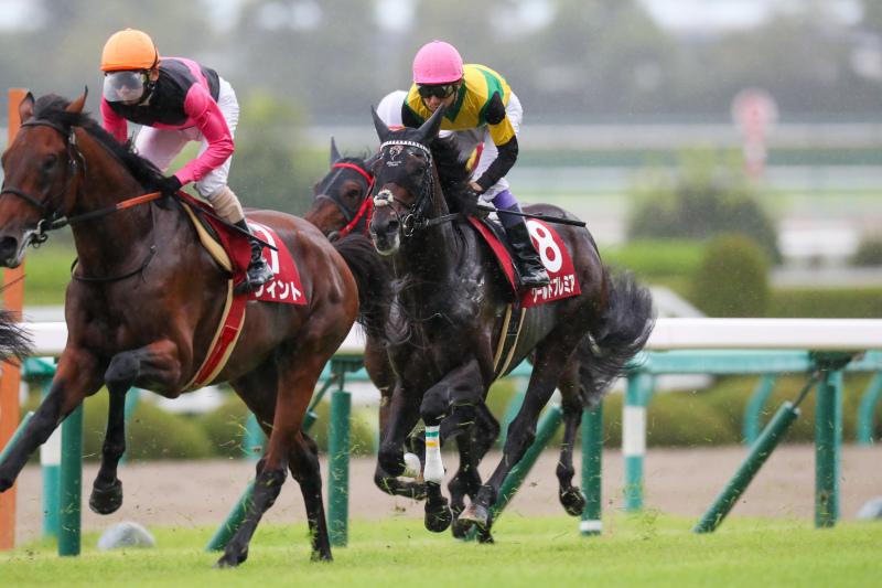 2019年9月22日 神戸新聞杯(GⅡ)&ジョッキーフェスティバル_f0204898_20592465.jpg