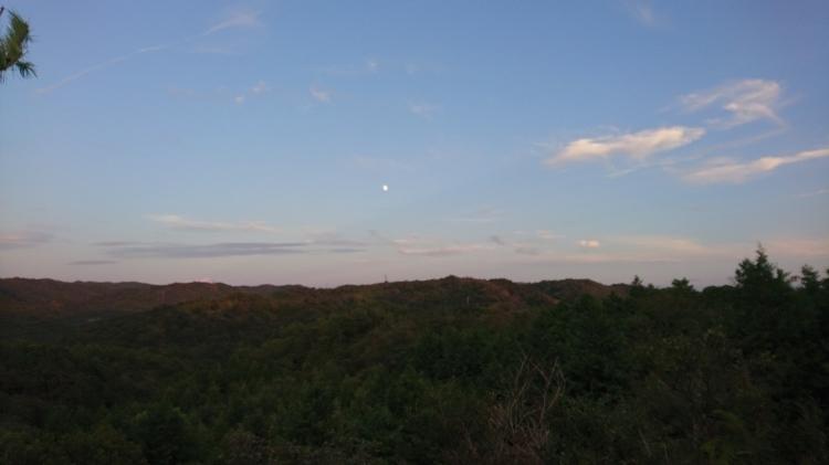 みさき森の音楽祭 里山夕暮れコンサートを開催します_d0161505_15354739.jpg