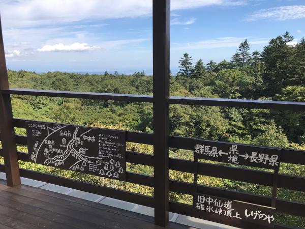 軽井沢の旅 その2 @元祖 峠のちから餅・しげの屋_b0157216_11115593.jpg